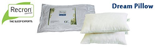 Recron Fiber Dream Pillow